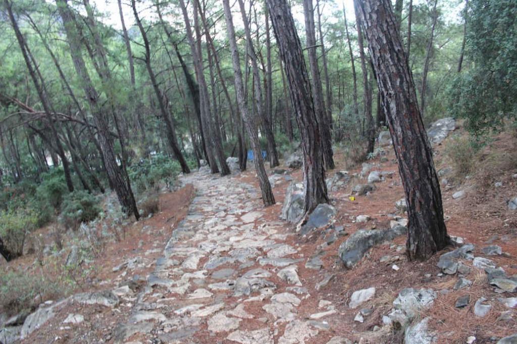 Тропа на Янарташ (Химеру)